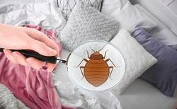 چگونه خانه را در مقابل ویروس کرونا ضدعفونی کنیم؟