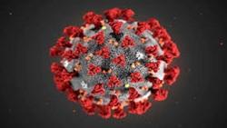 ویروس کرونا؛ افراد مشکوک چگونه از خود مراقبت کنند؟
