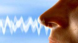 از دست دادن حس چشایی و بویایی از علائم ابتلا به کرونا است؟