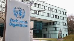سازمان جهانی بهداشت: موارد ابتلا به ویروس کرونا در ایران «در حال ثابت ماندن» است