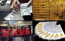 علت گرانی طلا در هفته گذشته چه بود؟/دلار همچنان گرفتار حباب قیمتی