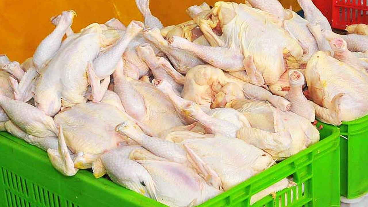 خرید تضمینی گوشت مرغ درچهارمحال و بختیاری