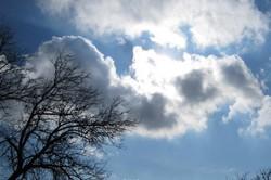 آسمان زنجان، صاف تا قسمتی ابری