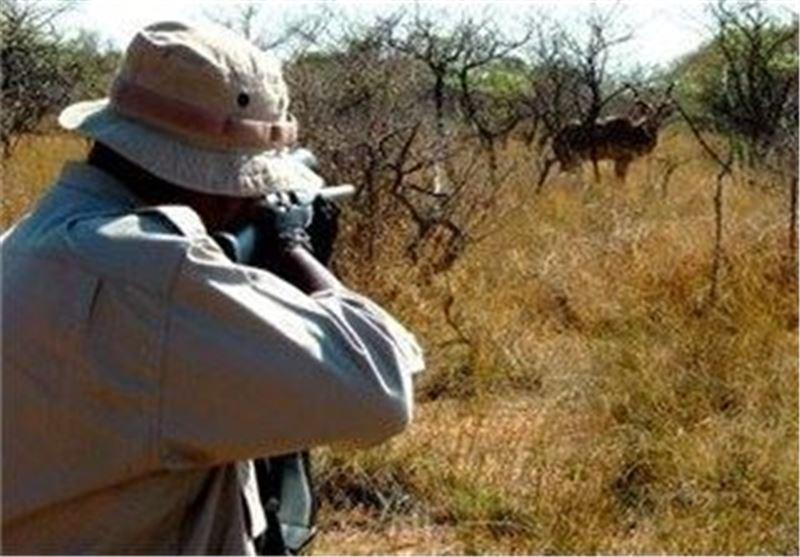 شکارچی میش وحشی در شهرستان اراک دستگیرشد