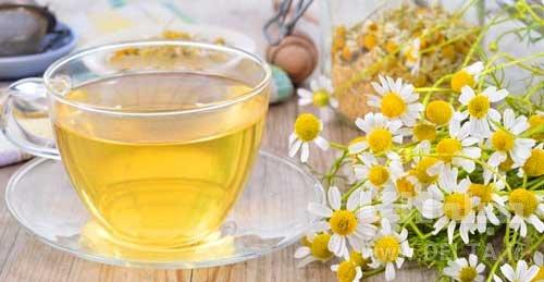 نوشیدن چای بابونه