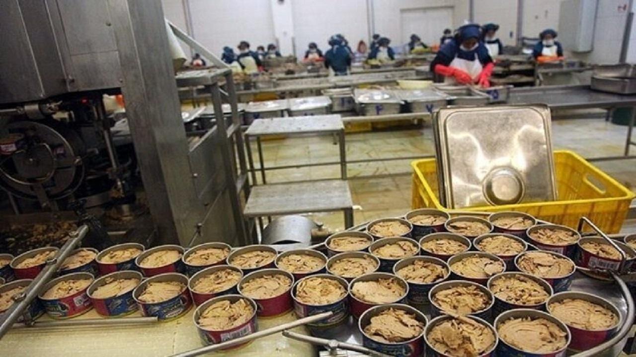 تولید روزانه ۱۵ تن کنسرو تن ماهی در استان سمنان