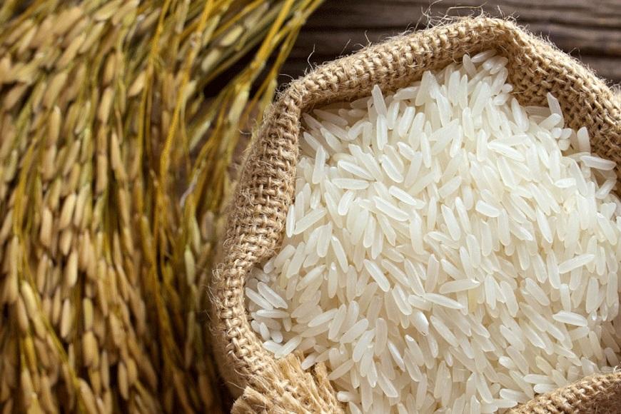 نوسان برنج ارتباطی به تولیدکننده ندارد/ تاجران و دلالان مقصر اصلی گرانی برنج