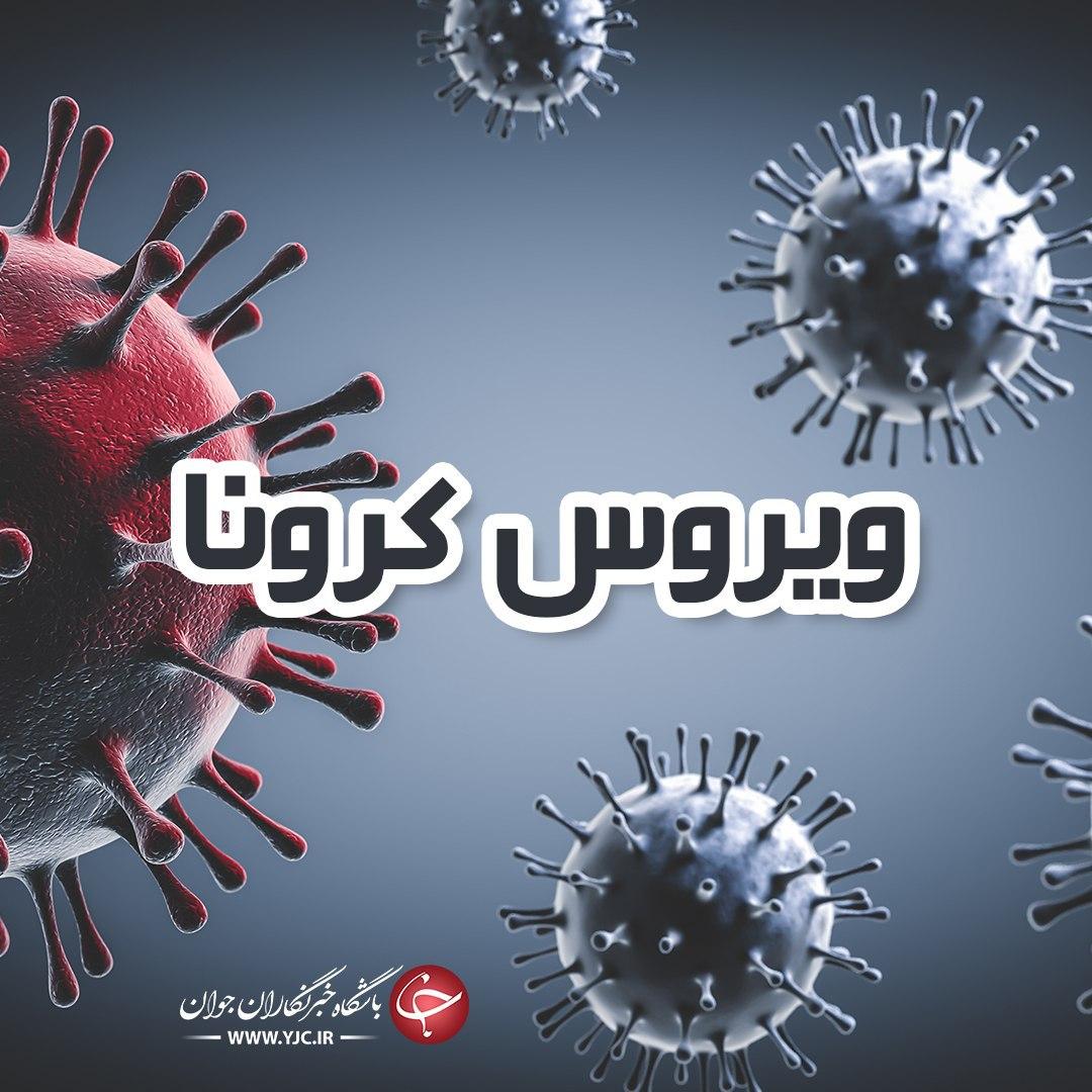 کرونا در فارس ۲۵ قربانی گرفت/۴۴ استان فارسی دیگر به دام این ویروس افتادند