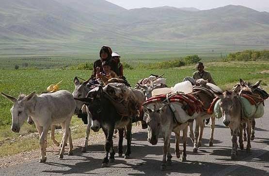 نگاهی گذرا به مهمترین رویدادهای پنجشنبه ۷ فروردین ماه در مازندران