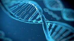 بررسی ژنتیک ایرانیها، توسط «فرقهای خاص» در ایالات متحده/ «نبرد بیولوژیک» محتمل است