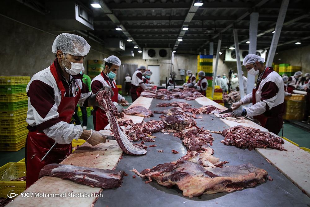 آیا گوشت قرمز به ویروس کرونا آلوده میشود؟ / مشخصات فرآوردههای دامی سالم را بشناسید