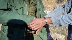 دستگیری دو متخلف شکار غیرمجاز