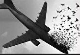 باشگاه خبرنگاران - انتشار نتایج تحقیقات درباره سقوط هواپیمای اوکراینی برای اولین بار/ ارسال پرونده به دادگاه نظامی تهران