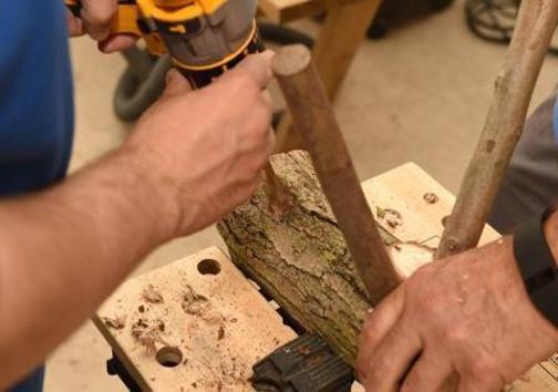 نجاران باستان چگونه با دستان خود تمدن را ساختند