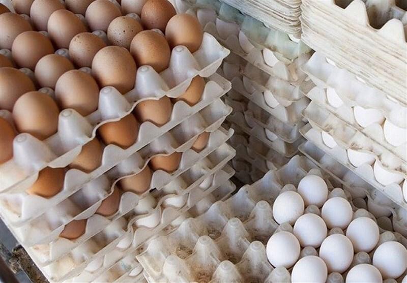 گزارش// تخم مرغ هم لوکس شد/ تخممرغ های لوکس بازار را آشفته کرد/ قاچاق این بار به تخممرغ رسید/ پای تخممرغ های وارداتی به ایران می رسد؟/تشنج بازار تخممرغ کی فروکش می کند؟/ عرضه تخممرغ های تنظیم بازاری دردی دوا نکرد