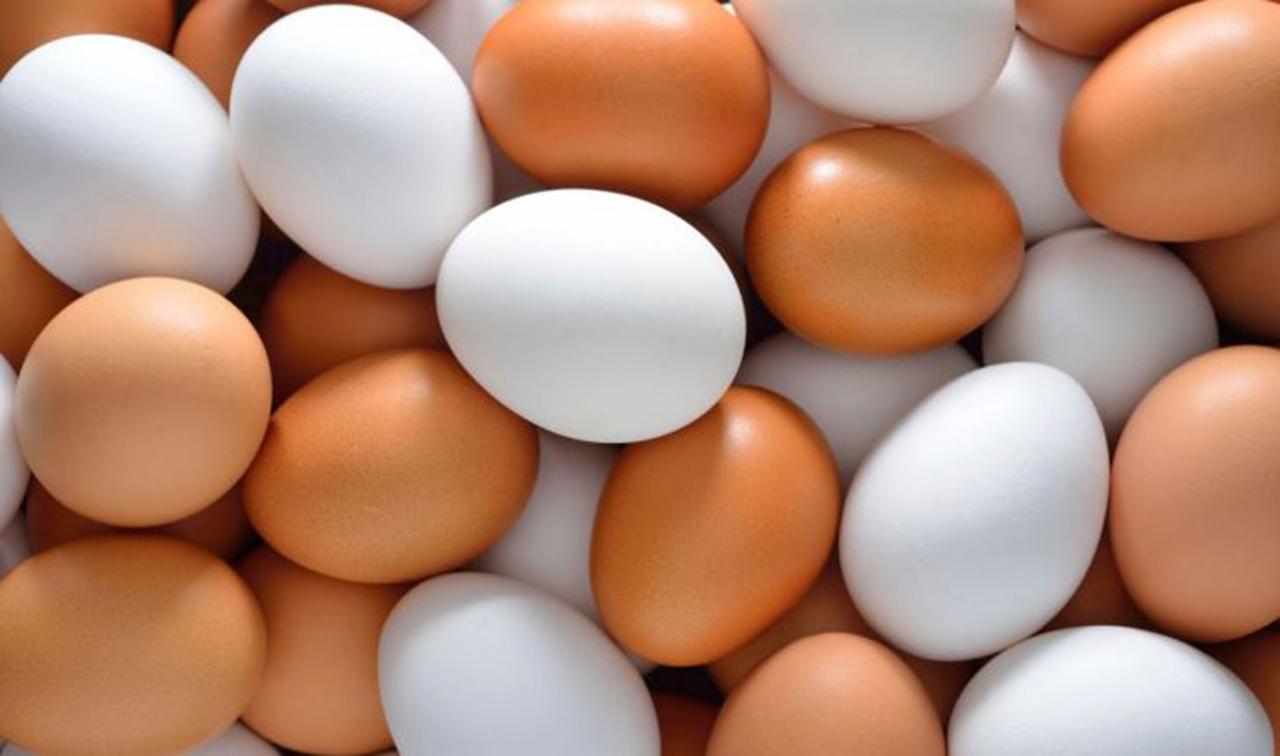 ۶۰ درصد تخم مرغ تولیدی در آذربایجان شرقی داخل استان مصرف میشود
