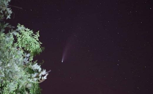 سیارک غول پیکر