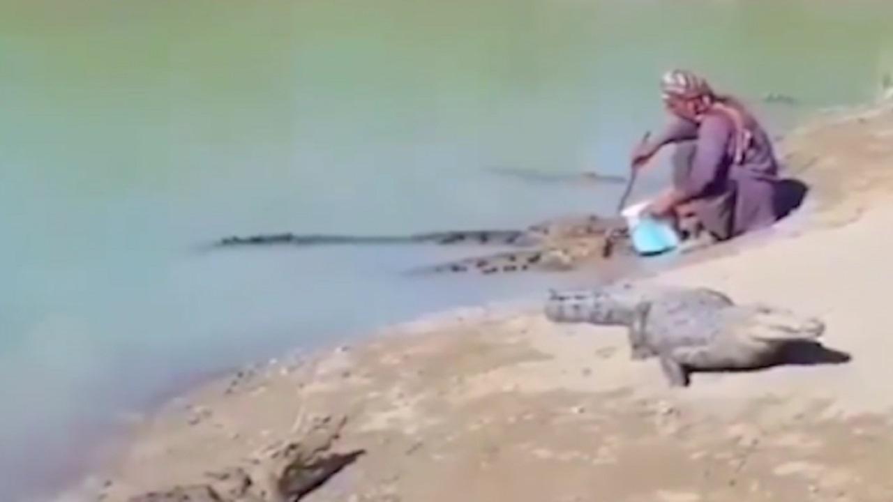 زندگی مسالمتآمیز مرد بلوچ با تمساحها! + فیلم