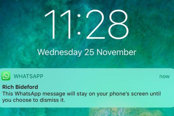 9 ترفند کاربردی در واتساپ؛ از حذف خودکار پیام تا تنظیم پس زمینه برای چتها