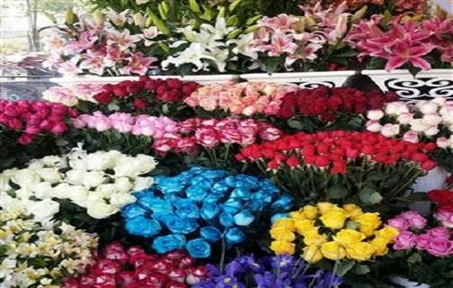 نبض بازار گل فروشان به شماره افتاد/ هجوم کرونا به جان گلها