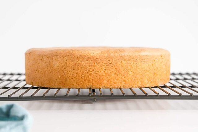 طرز تهیه چیزکیک زنجبیلی با پایه کیک در فر + فوت و فن ها