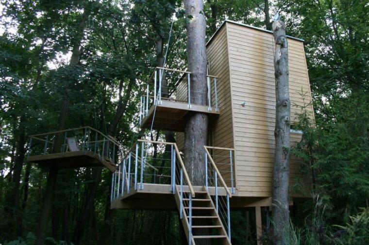 یازده ساختمانسازی هوشمندانه که بخاطرشان درختی قطع نشد!