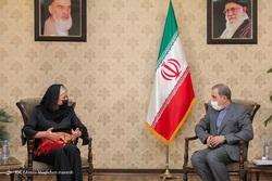 دیدار ولایتی با سفیر روسیه در ایران