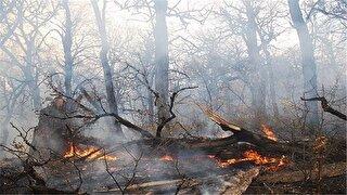 وزش باد گرم و افزایش دما در گیلان/ هشدار آتش سوزی در جنگلها و مراتع