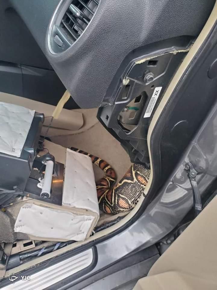 صحنه وحشتناکی که راننده را در ماشینش میخکوب کرد