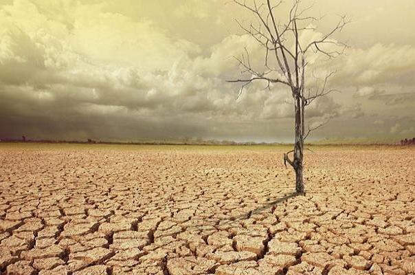 دلیل گرمی هوا در پائیز و زمستان سال جاری چیست؟
