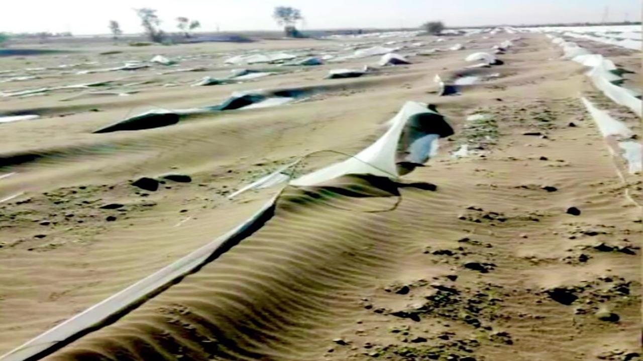 طوفان درجازموریان