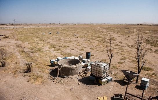 تامین حقابه کشاورزان تنها را جلوگیری از فروش زمین زراعی