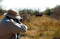 دستگیری شکارچی غیر مجاز در گچساران