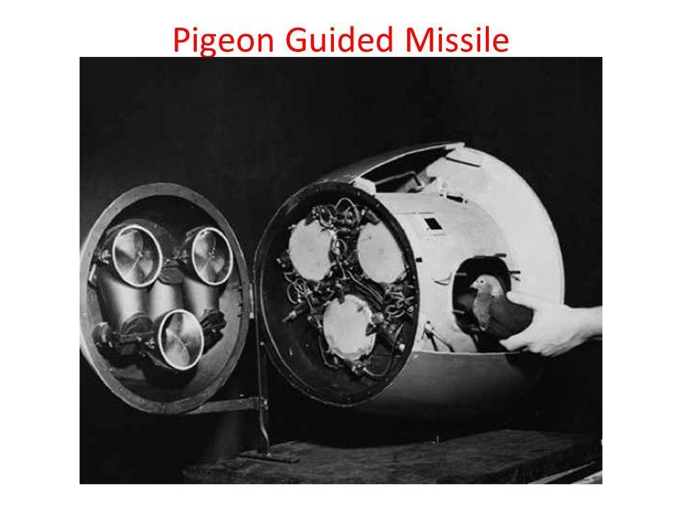 ۶ سلاحهای عجیب و غریب در جنگ جهانی دوم + تصاویر