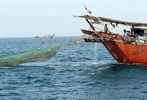 بررسی صفر تا صد صید ترال در ایران / آیا