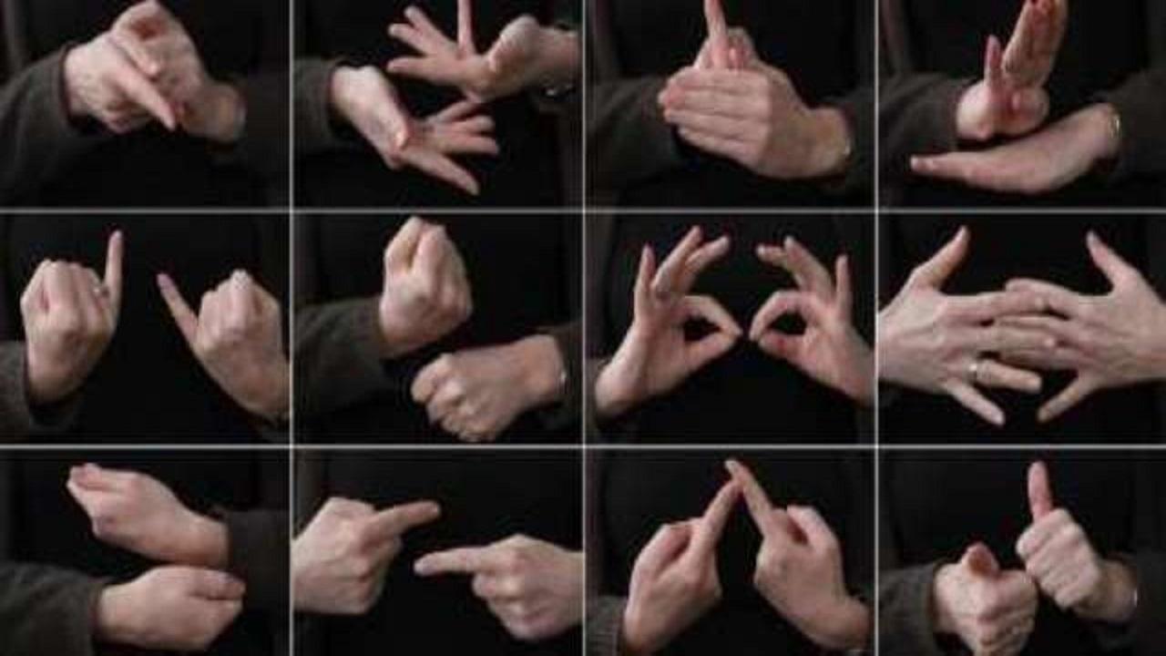 زبان اشاره