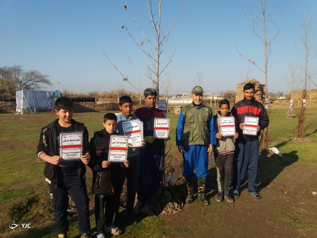 روایتی خواندنی از ماجرای درختانی پرآوازه در یک روستای دور افتاده