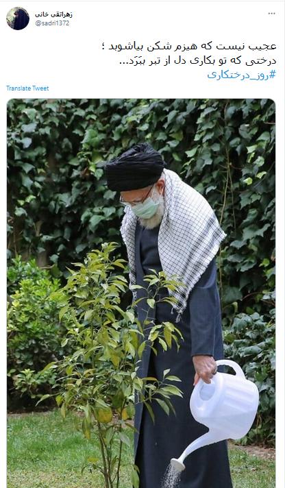 واکنش کاربران به درختکاری رهبر انقلاب