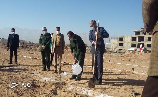 افتتاح بوستان شهید گمنام با غرس نهال زیتون