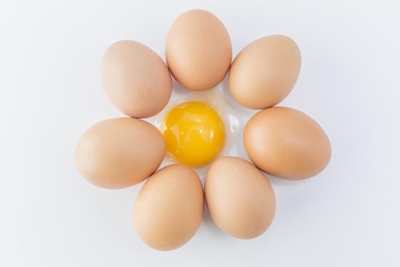 رنگ پوسته تخم مرغ