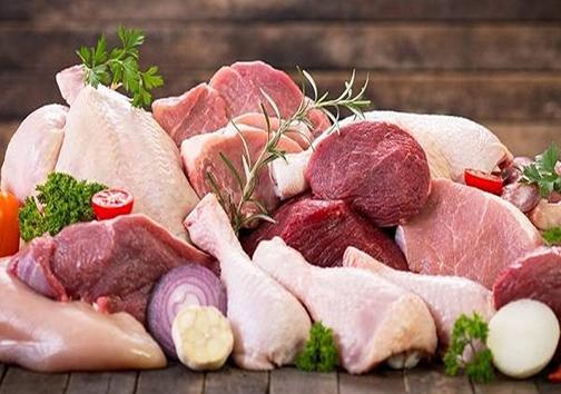 هنگام استفاده از گروه پروتئین چه نکاتی را رعایت کنیم؟