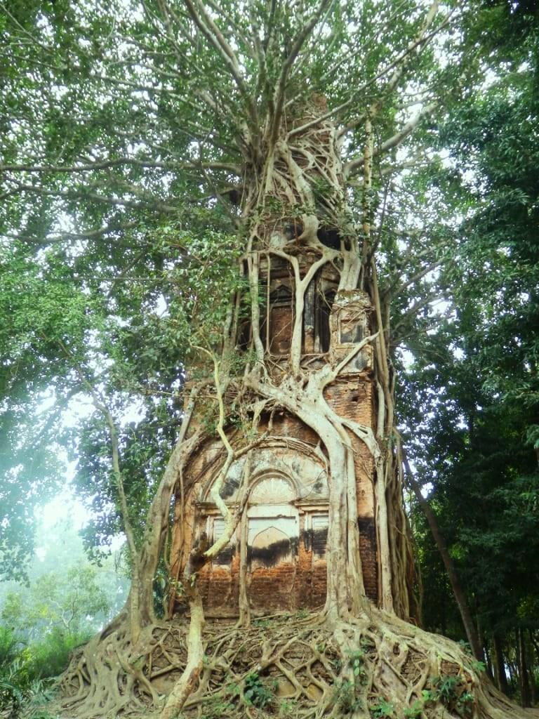 ۱۰ مکان ساخته دست انسان که طبیعت آنها را تزئین کرده است