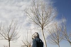 کشفیات طرحهای هفت گانه پلیسهای تخصصی غرب تهران