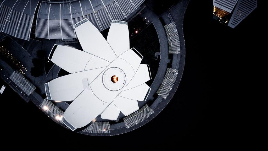 موزهای که تداعیکننده گل نیلوفر آبی است