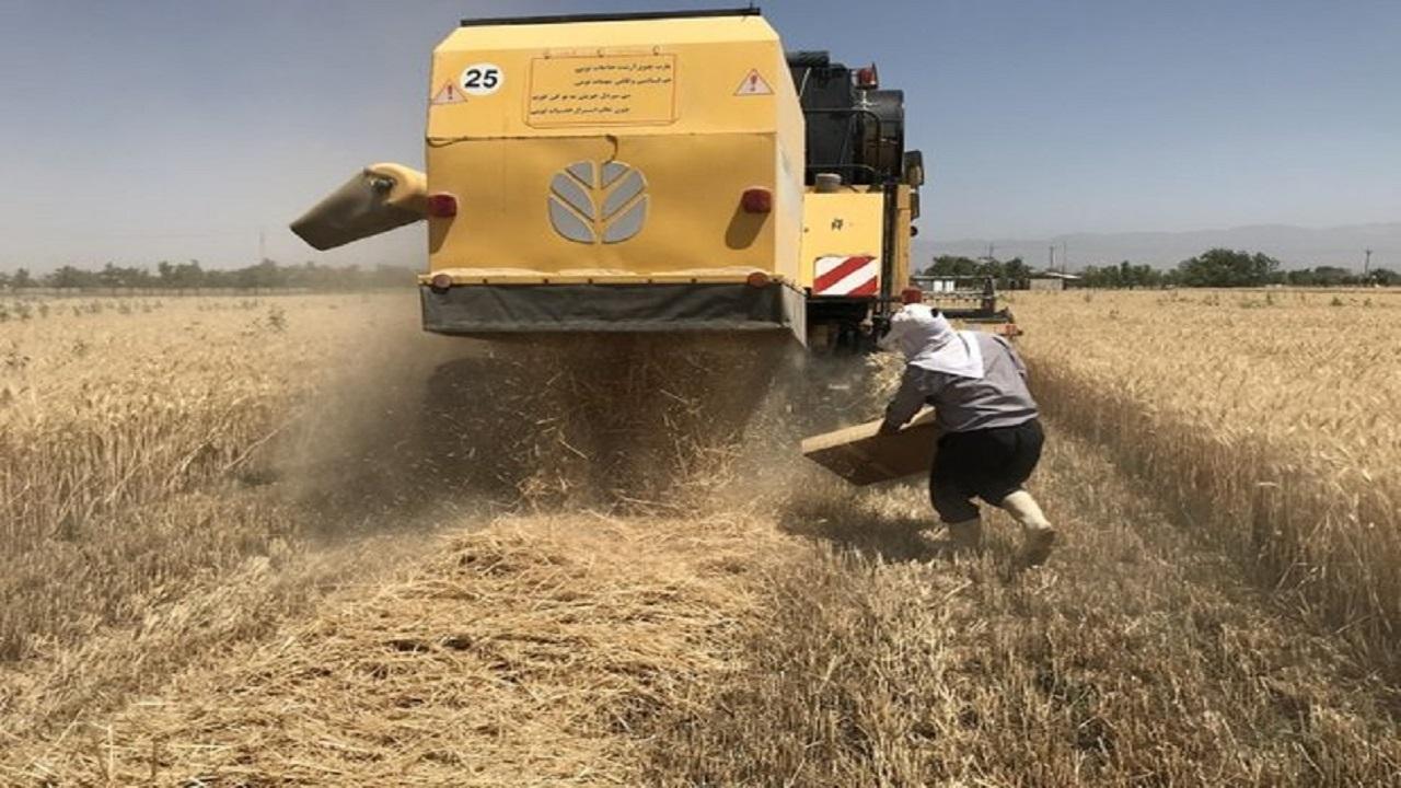 متوسط ضایعات محصولات کشاورزی ۱۸ درصد است