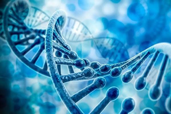 تغییر ژنتیکی