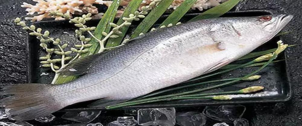 ماهی خاردار و کلیه