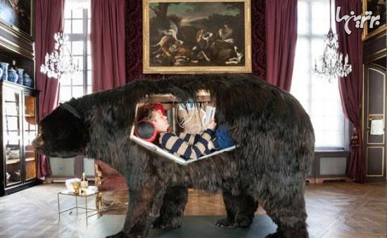 زندگی یک دختر داخل جسد خرس! + تصاویر