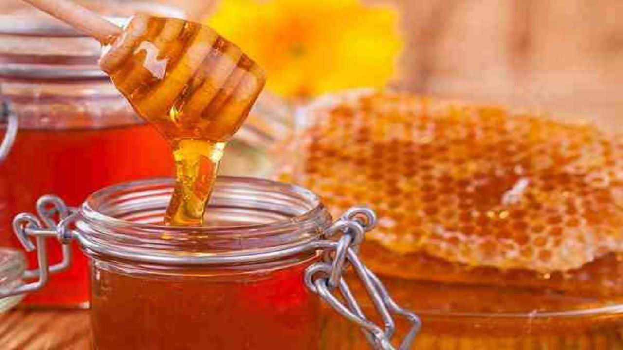 تولید دو هزار و ۹۰۰ تن عسل در سال ۹۸