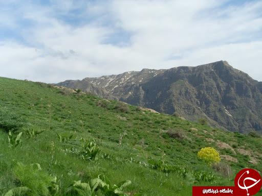ایام بهار و خان نعمت بهارانه در کرمان